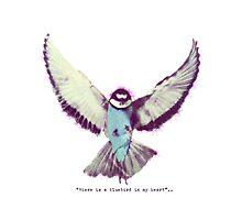 Bluebird by fuka-eri
