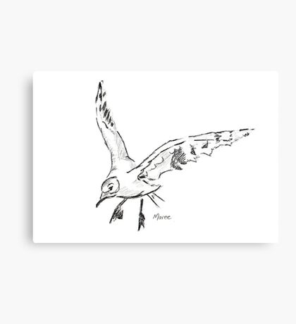 Countryside Seagull  Canvas Print