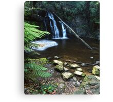 """Upper Lilydale Falls"" ∞ Lilydale, Tasmania - Australia Canvas Print"