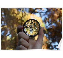 Magnifying glass at autumn  Poster