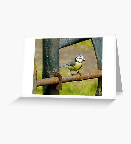 Daddy's home - open wide... Greeting Card