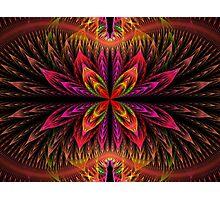 Blooming Apophysis Photographic Print