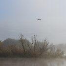 Foggy river by bobby1