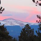 Pikes Peak Pink by Christine Ford