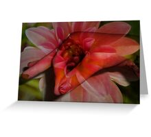 One Touch Greeting Card