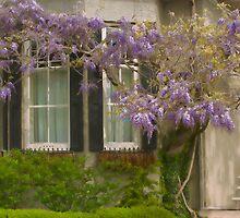 Spring Elegance by Marilyn Cornwell