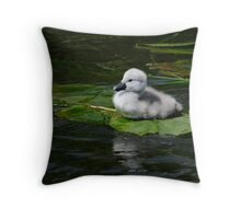 Do you like my raft! Cygnet, River Barrow, Ireland Throw Pillow