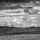 Tablelands by Anthony Evans