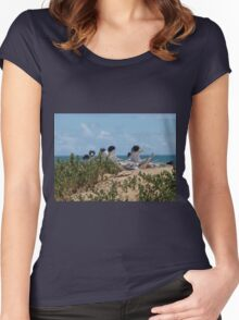 Crested Terns Penguin Island (3) Women's Fitted Scoop T-Shirt