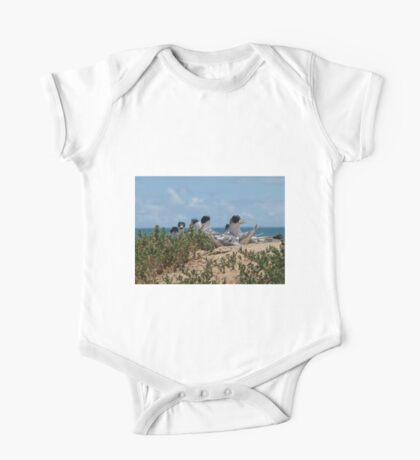 Crested Terns Penguin Island (3) One Piece - Short Sleeve