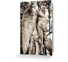 david angel Greeting Card