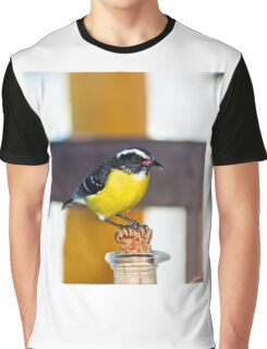 Looking For Sugar Graphic T-Shirt