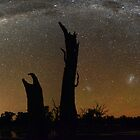 Milky Way Over Tree 'Chimneys' by Wayne England
