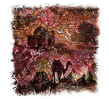 The Atlas Of Dreams - Color Plate 99 Photographic Print