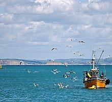Slippery Dick ~ Lyme Regis by Susie Peek