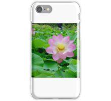 Lotus Flower Beauty iPhone Case/Skin