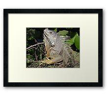 I Like My Suntan - Quiero Mi Bronceado Framed Print