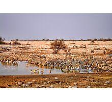 Waterhole in Etosha National Park/ Namibia 2 Photographic Print