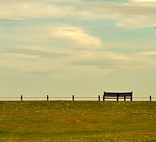 Resting place by seanwareing