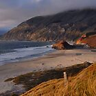 Big Sur Beach by Stephen Vecchiotti