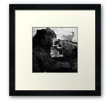 Bear Fight Framed Print