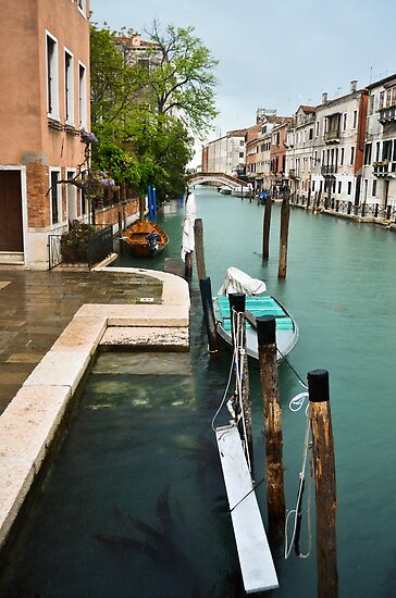 Venezia by Laura Cutmore