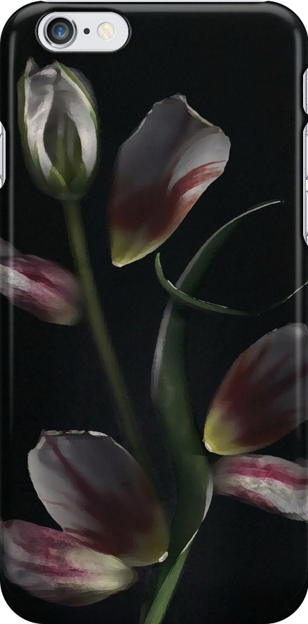 iPhone Case of painting...Tulip Art... by linmarie