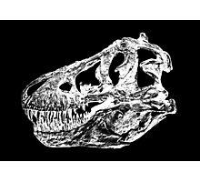 Dinosaur: T-Rex - White Ink Photographic Print