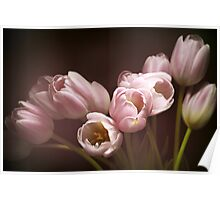 Those pink tulips Poster