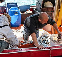 cleaning the catch by Anne Scantlebury
