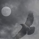 The Moon asks the Crow. by Kristi Fiske