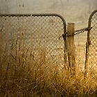 Close the Gate by sharon2121