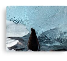 Penguin Ice Canvas Print