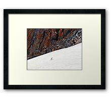 Penguin Highway Framed Print