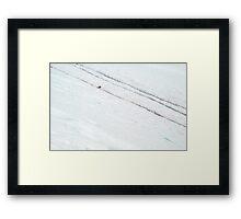 Penguin Highways Framed Print