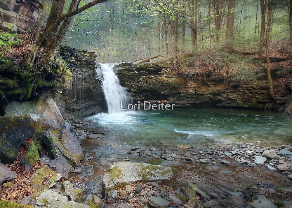 Upper Twin Falls by Lori Deiter
