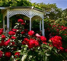 Roses and gazebo by Celeste Mookherjee