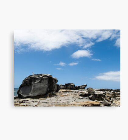 rocky lanscape Canvas Print