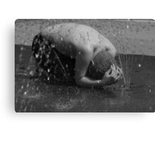 DUCK AND COVER Canvas Print