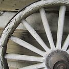 Old Wagon Wheel by CuteNComfy