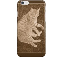 Fat Cat In the Grass iPhone Case/Skin