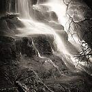 Lilydale Falls by Husky