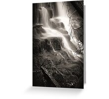 Lilydale Falls Greeting Card