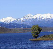 Camas Reservior Idaho by MissMimi63