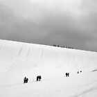Expeditioners , Antarctic Peninsula     Jan 2011 by geophotographic