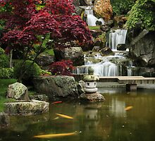 The Kyoto Garden by Irina Chuckowree