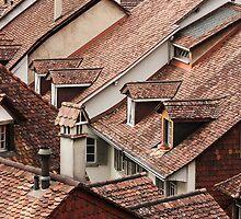 Rooftops by Irina Chuckowree