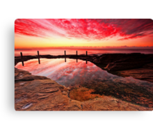 The Wait is Over Canvas Print