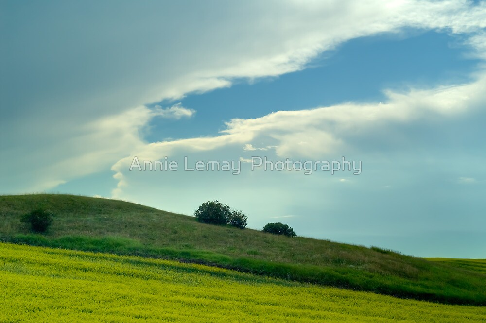 Alberta - Drive by Shooting by Annie Lemay  Photography
