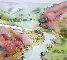 Birds Wye View by Ruth S Harris